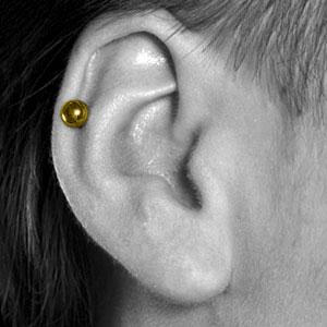 Helix / Cartilage